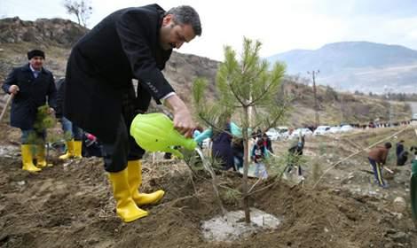 Tokat Belediyesi Son 6 Ayda 70 Bin Ağaç Dikti