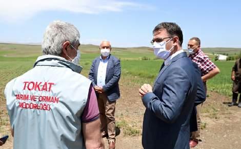 Vali Dr. Ozan Balcı, Çamlıbel Ovası'nda